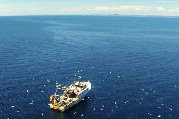 mediterranée sauvage - bateau peche horizon